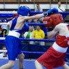 бокс анапа